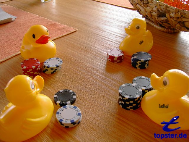 Duck-Anna, duck-Bernd, duck-Tom og jeg spille duck Poker
