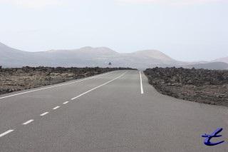 Landevejen