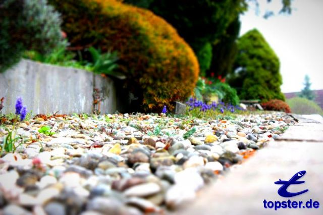 Piedras en el jardín