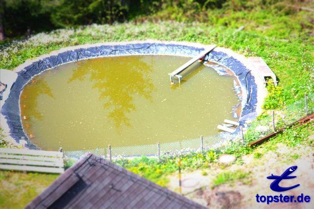 Водный бассейн