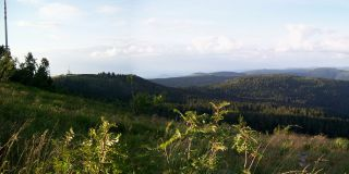 Views of the Hornisgrinde on the Black Forest