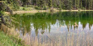 Lake, Jasper