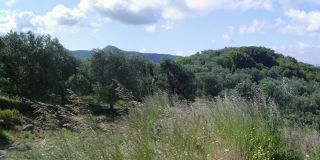 Landschap in Corfu