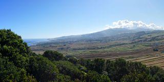 Pico Matias Simão
