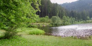 Lower Lake in Baiersbronn